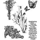 Tim Holtz 'Nature's Discovery' Rubber Stamp Set