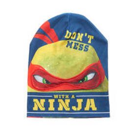 Boys (4-7) Teenage Mutant Ninja Turtles Flip Beani