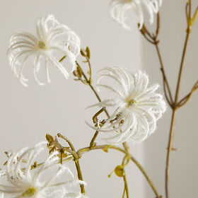 Crate Barrel NewFaux Clematis Seed Stem