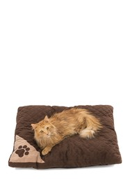 Duck River Textile Chocolate Brennon Quilting Pet