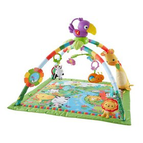 Fisher-Price Music and Lights Deluxe Gym, Rainfore