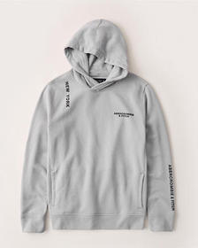 The A&F Logo Perfect Popover Hoodie, GREY