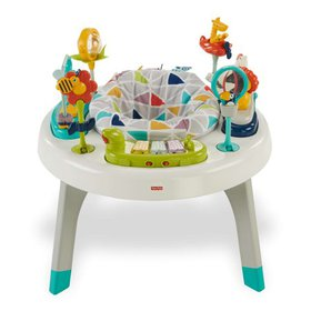 Fisher-Price 2-in-1 Sit-to-Stand Activity Center P