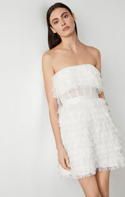 BCBG Lace Fringe Strapless Dress