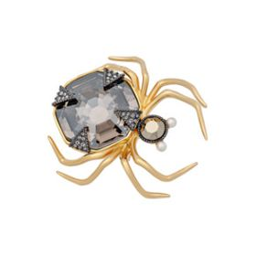 Swarovski Magnetic 5409681 Women's Brooche