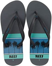 Reef Switchfoot Print