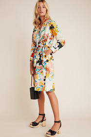 Anthropologie Rilke Poplin Shirtdress
