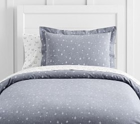 Pottery Barn Organic The Emily & Meritt Star Sham