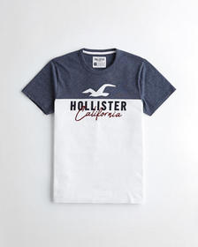 Hollister Colorblock Logo Graphic Tee, HEATHER NAV
