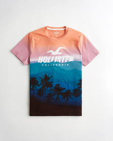 Hollister Palm Tree Logo Graphic Tee, ORANGE TO NA