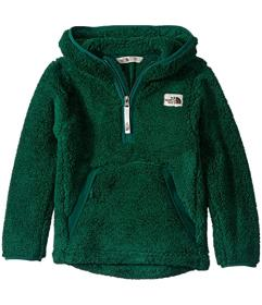 The North Face Kids Campshire Hoodie (Little Kids\