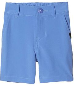 Quiksilver Kids Union Amphibian (Toddler/Little Ki
