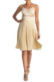 Burberry Lace Pleated Dress