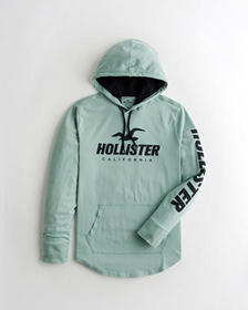 Hollister Print Logo Hooded Graphic Tee, MINT