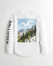 Hollister Landscape Print Logo Graphic Tee, WHITE