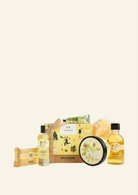 Protecting Moringa Big Gift Box