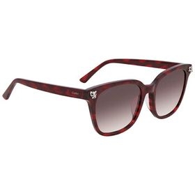 Cartier Cartier Grey Square Men's Sunglasses CT014