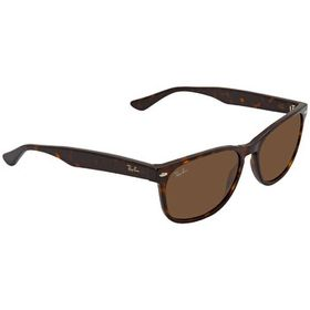 Ray-Ban Ray-Ban Brown Classic B-15 Square Sunglass