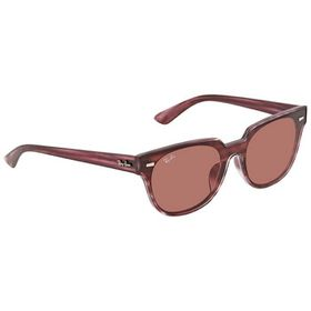 Ray-Ban Ray-Ban Violet Classic Round Sunglasses 0R