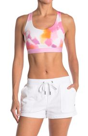 Champion Absolute Sports Bra