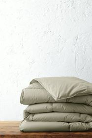 Lands End Colored Down Comforter