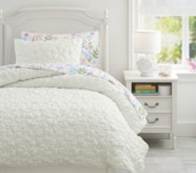Pottery Barn Odessa Floral Recycled Comforter & Sh