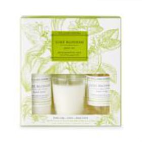 Williams Sonoma Lime Blossom Guest Set
